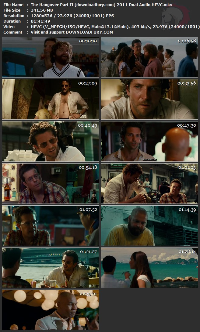 The Hangover Part 2 2011 Dual Audio 480p HEVC 300mb