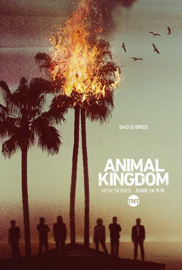 Download Animal Kingdom Season 01 WEB-HD 480p 150MB Each