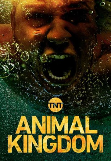 Download Animal Kingdom Season 03 WEB-HD 480p 150MB Each